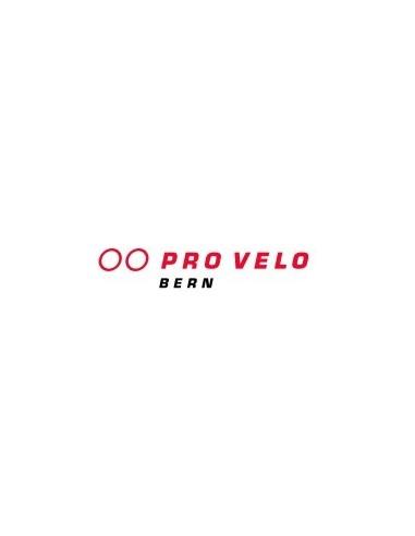 Firmenmitgliedschaft Pro Velo Bern